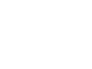 לוגו וסלוגן של כסף דיגיטלי צבע לבן בעברית
